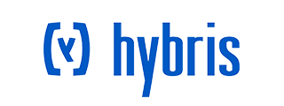 hybris-natural-language-search
