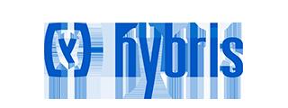 Hybris site search
